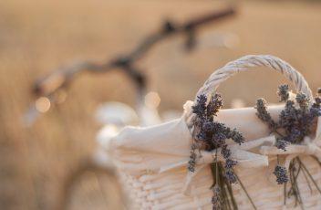 bike-2429983_960_720